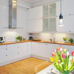 Кухни белого цвета в интерьере кухни